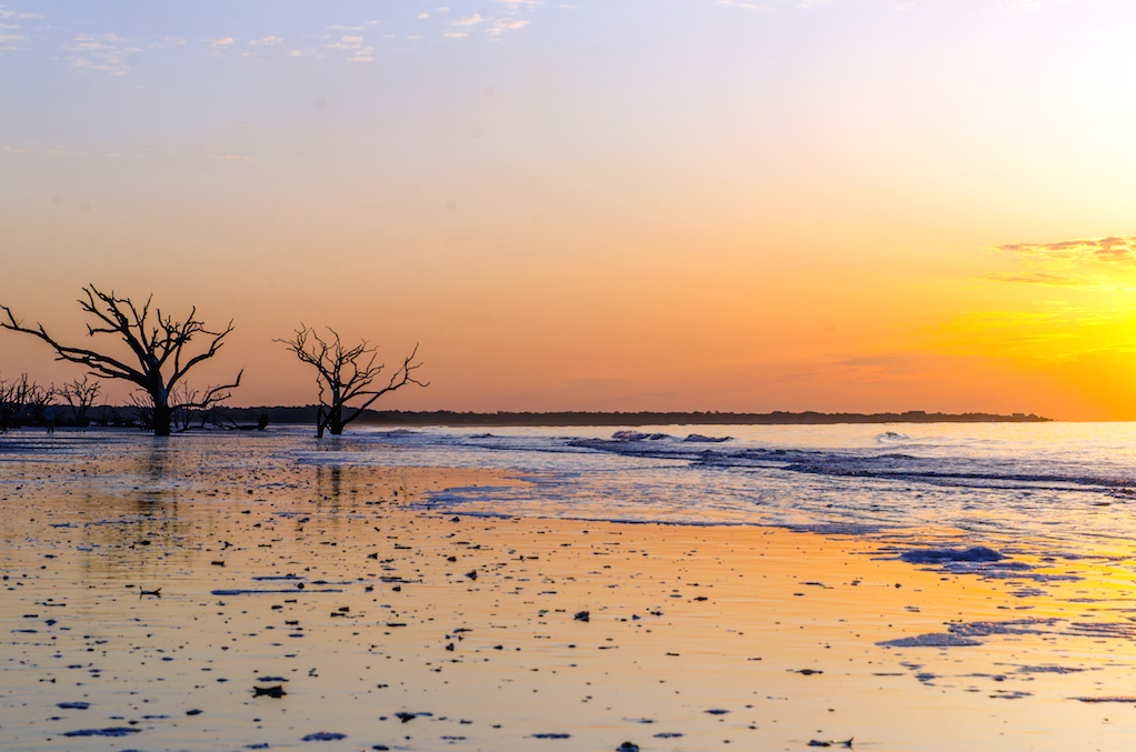 Edisto-6829_sunset-at-botany