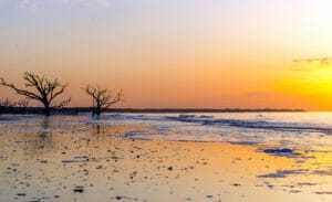 Edisto Island Botany Bay Beach