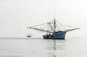 Edisto Shrimp Boat