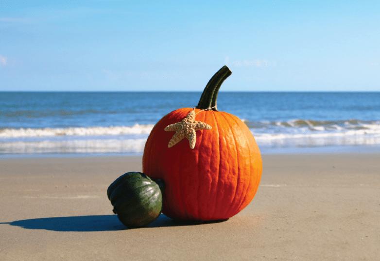 Fall in Edisto Beach